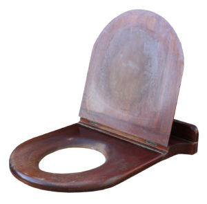An Antique Mahogany Toilet Seat